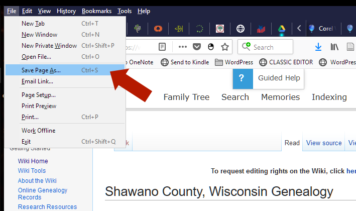 Records - Save Web Page As File Menu.